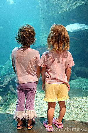 Little Girls at Aquarium