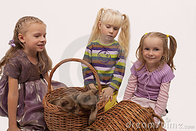 Little girls with burmese cats