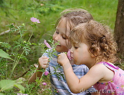 Little girls smelling flowers