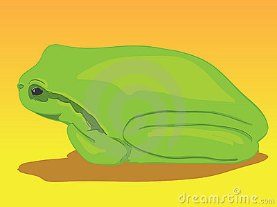Little green tree-frog