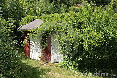 Little House In The Garden Stock Image - Image: 5457071