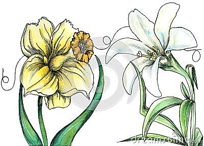 Little Ida s Flowers - Whispering flowers