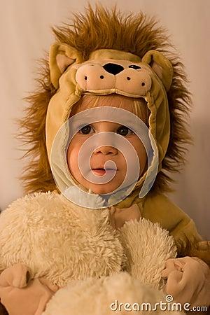 Free Little Lion Royalty Free Stock Photo - 6282275