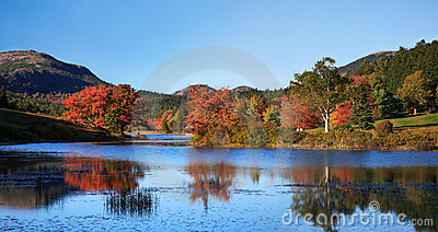 Little Long Pond Panoramic