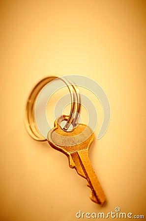 Little metal key.