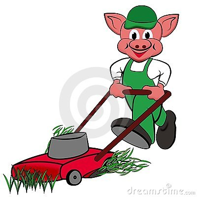 Little pigs with lawn mower