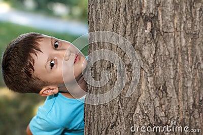 Little preschooler boy hide-and-seek