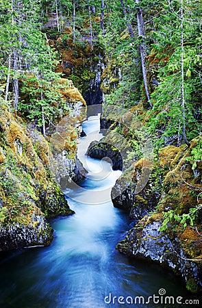 Free Little Qualicum Falls Provincial Park Stock Photo - 24615160