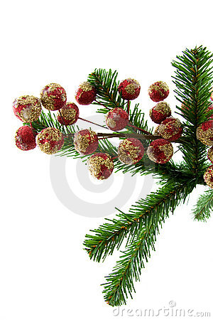 Little red christmas balls on a tree