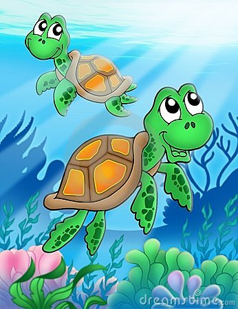 Little sea turtles