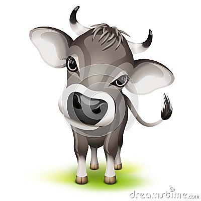 Little swiss cow