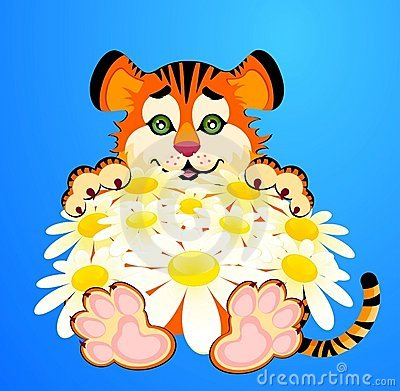 Little tiger with camomiles