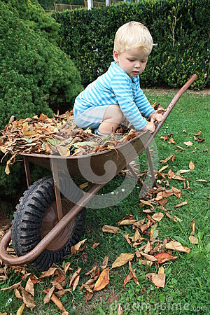 Little toddler in the garden