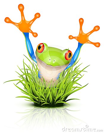 Free Little Tree Frog On Grass Royalty Free Stock Images - 24372979