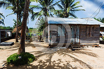 Little wooden house among palm trees and shadows
