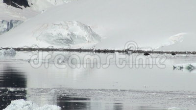 Littoral de l'Antarctique - réchauffement global - givrages banque de vidéos