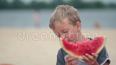 Litttle boy eating delicious watermelon on beach stock video footage