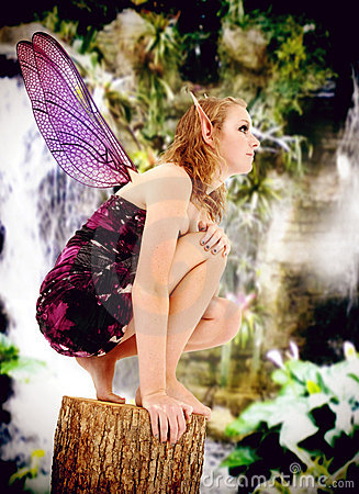 Live Action Role Play Teen Fairie Costume