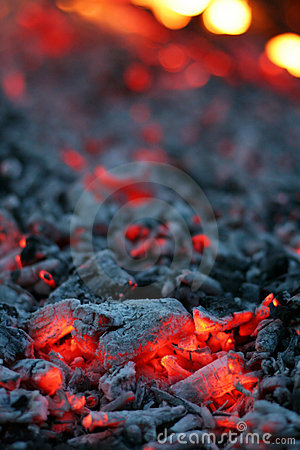 Free Live Coal Stock Photos - 703543