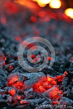 Free Live Coal Stock Photos - 703543