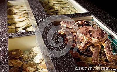 Live crab in the aquarium