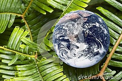 Living Planet Earth