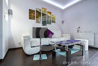 Living room with Cliffs of Moher picture