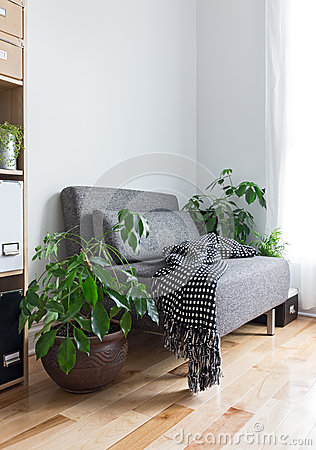 Free Living Room With Comfortable Armchair And Plants Stock Photos - 31531873