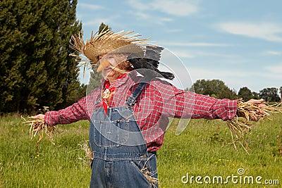 Living scarecrow