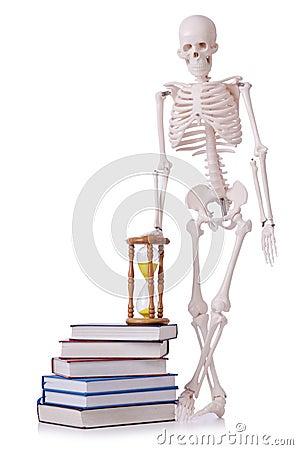 Livros de leitura de esqueleto