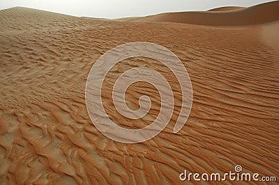 Liwa Sands