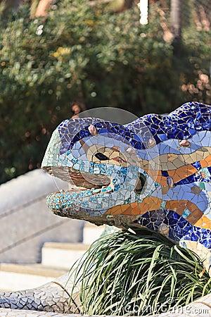 Lizard in park Guel