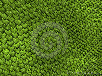 Lizard scales