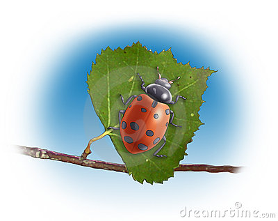 Lladybug