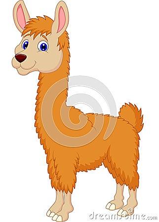 Free Llama Cartoon Stock Images - 33236614