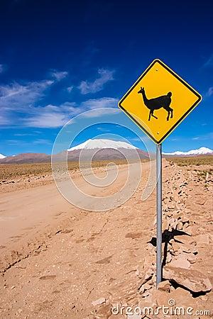 Free Llama Road Sign Stock Photos - 46712263