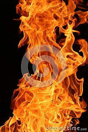 llamas-ardientes--thumb3372120.jpg