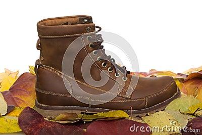 Lleather men s shoes