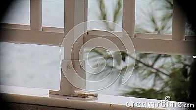 Llueva en el balcón que pasa por alto el mar en una ilustración almacen de metraje de vídeo