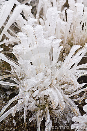 Láminas del hielo