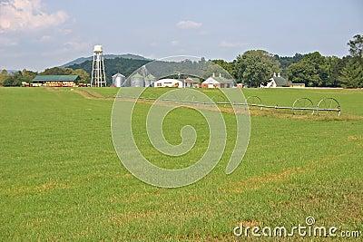 Línea de la irrigación