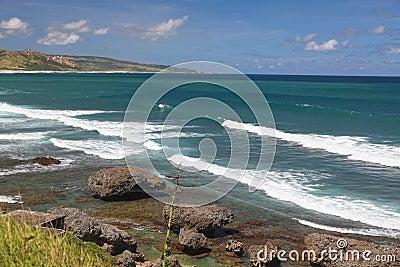 Línea de la playa de Bathsheba