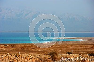 Línea de la playa del mar muerto
