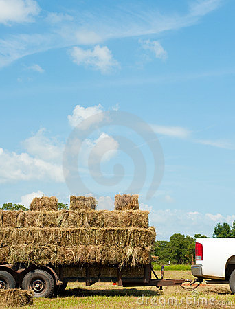 Load of bales