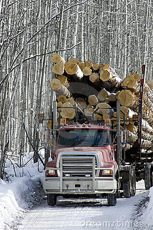Loaded logging truck driving on road
