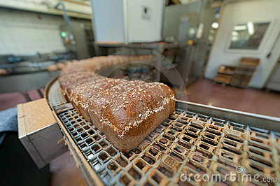 Loafs of bread in the factory