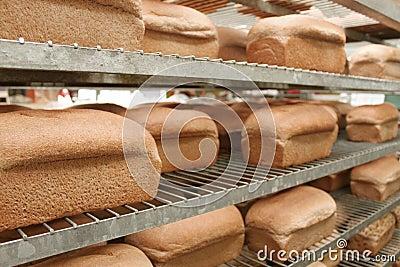 Loaves of bread in bakery