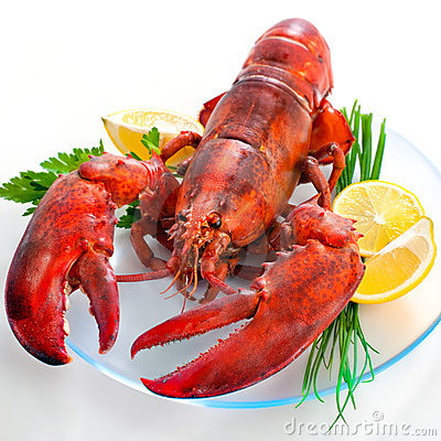 Free Lobster Royalty Free Stock Photography - 23267987