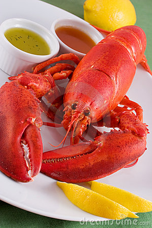 Free Lobster Royalty Free Stock Photography - 913727