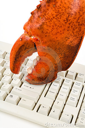 Lobster Claw and Computer Keyboard